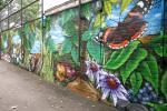 Ashmole Primary school