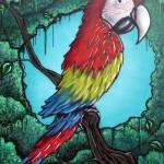 aero bird - Belton