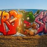 pid-skate-07